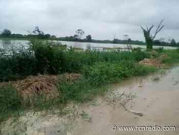 Creciente del río Cauca provoca inundaciones en Ayapel, Córdoba - RCN Radio