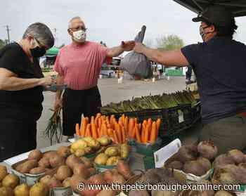 Photos: Lakefield Farmers Market opens for the season - ThePeterboroughExaminer.com