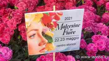 Torna «Malcesine in fiore» Piante tropicali protagoniste - L'Arena