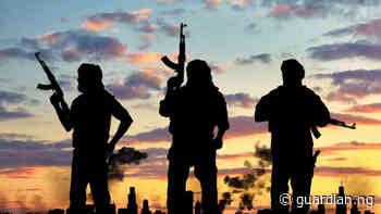 Armed men rob expatriate, kill orderly, driver in Umuahia - Guardian