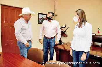 Solidarios legisladores con familias de Sabinas – La Prensa de Monclova - La Prensa De Monclova