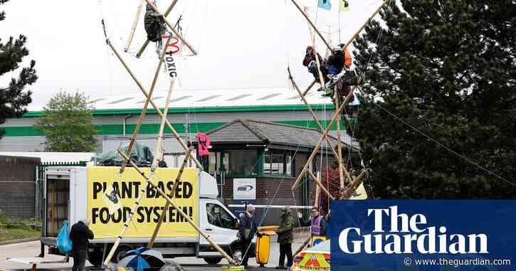 Animal rights activists blockade McDonald's distribution centres across UK –video