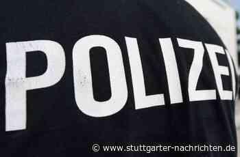 Vorfall in Marbach am Neckar - Paar geht nach Ehe-Streit auf Polizisten los - Stuttgarter Nachrichten