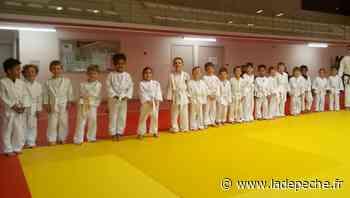Saint-Orens-de-Gameville. Judo : les enfants ont retrouvé le chemin des tatamis - ladepeche.fr