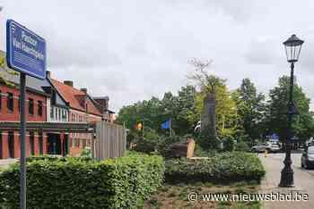 90-jarige rode beuk geveld in centrum van Meerhout - Het Nieuwsblad