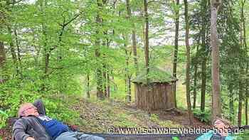 Haigerloch - Ganz entspannt Bäume betrachten - Schwarzwälder Bote