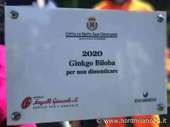 Sesto San Giovanni, un Ginko biloba per non dimenticare le vittime Covid - Nord Milano 24