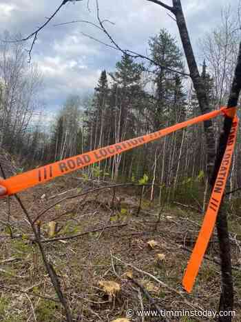 Mattagami First Nation member concerned with forestry activity - TimminsToday