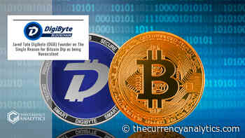 Jared Tate Digibyte (DGB) Founder on The Single Reason for Bitcoin Dip as being Nonexistent - The Cryptocurrency Analytics