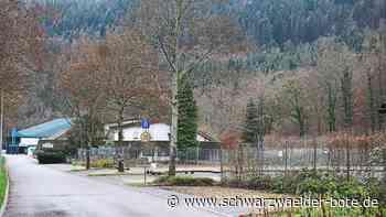 Eishalle in Bad Liebenzell - Ist der Fortbestand des Polarions in Gefahr? - Schwarzwälder Bote