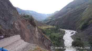 Cientos de campesinos perderían cosechas de mora en Roncesvalles - Alerta Tolima