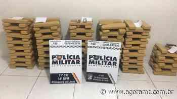 Polícia Militar apreende 176 kg de maconha em Primavera do Leste - Agora MT - AgoraMT