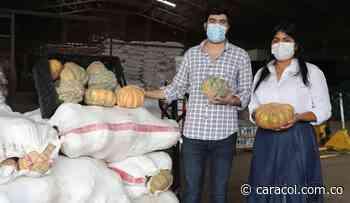 Campesinos de Pinillos vendieron 5 toneladas de auyama en Cartagena - Caracol Radio