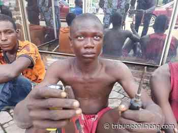 17-year-old teenager vandalizing, stealing public properties arrested in Yenagoa - NIGERIAN TRIBUNE