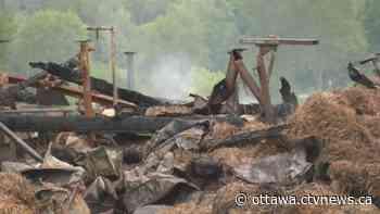 Crews respond to barn fire near Manotick - CTV Toronto