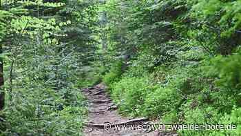 Baiersbronn - Neue Öffnungszeiten - Schwarzwälder Bote