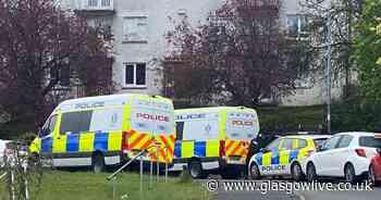 East Kilbride armed police incident: Man arrested as cops descend on Elphinstone Crescent - Glasgow Live
