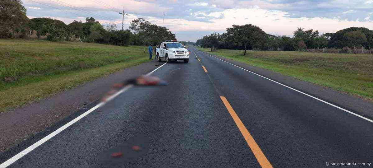 GENERAL DELGADO: CICLISTA FALLECE EN ACCIDENTE SOBRE RUTA 01 - radiomarandu.com.py