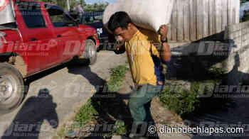 Retornan a sus viviendas desplazados del Río Jordán en Chenalhó - Diario de Chiapas