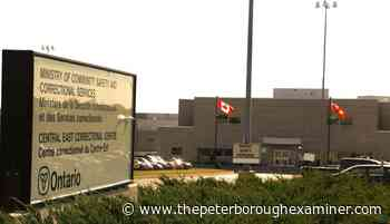 19 new COVID-19 cases in City of Kawartha Lakes; 9 in Northumberland County - ThePeterboroughExaminer.com
