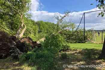 Bomen vernielen voetbaldoel