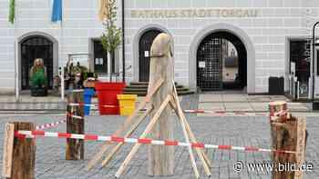 Torgau: Penis oder Spargel – Strammes Stück vor Demo am Samstag abgebaut - BILD