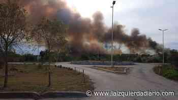 Denuncian incendios en la reserva provincial Santa Catalina de Lomas de Zamora - La Izquierda Diario