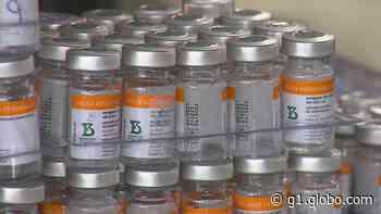 Covid-19: Visconde do Rio Branco retoma vacinação da 2ª dose com a CoronaVac - G1
