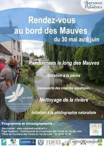Petites bêtes du cours d'eau Pont de Baulette mercredi 2 juin 2021 - Unidivers
