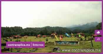 Amecameca, sede del Bosque Esmeralda, primer santuario de luciérnagas en el Edomex - ContraRéplica