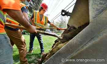Eight capital works projects planned for Orangeville this year - Orangeville Banner