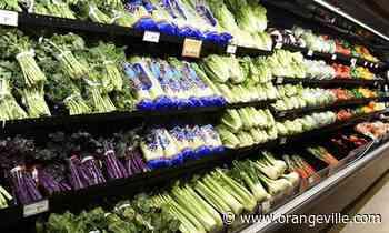 Food Basics, Sobeys stores in Caledon - Orangeville Banner