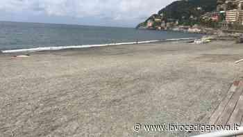 Voltri e Vesima, le spiagge sono quasi pronte - LaVoceDiGenova.it