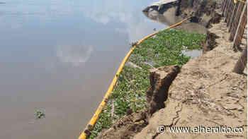 Cormagdalena monitorea el río para observar proceso erosivo en Salamina - EL HERALDO
