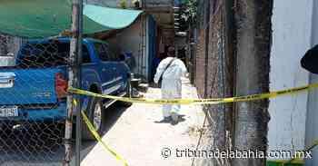 Hallan cadáver putrefacto en vecindad de Loma Bonita - Noticias en Puerto Vallarta - Tribuna de la Bahía