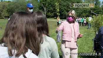 """Campoformido """"amico"""" delle api: donati 200 alberi melliferi alla scuola ed associazioni - Nordest24.it"""