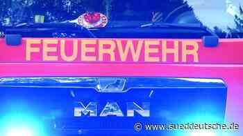 Feuerwehr befreit Schwanen-Mama von Angelhaken - Süddeutsche Zeitung