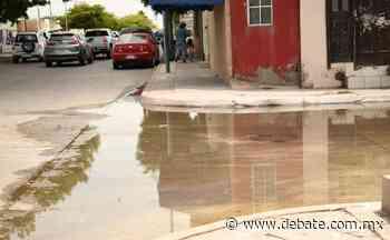 Vecinos de Infonavit Arboledas en Los Mochis no aguantan las aguas negras en las calles - Debate