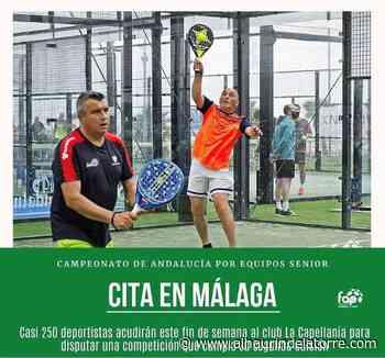 El Club Capellanía de Alhaurín de la Torre acoge este fin de semana el Campeonato Andaluz de Pádel por Equipos Sénior - Alhaurindelatorre.com