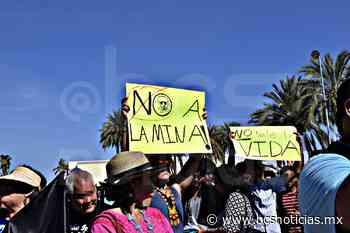 ¿Y las denuncias?: AMLO critica a ambientalistas por minas en áreas protegidas, incluida BCS - BCS Noticias