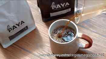 Paya Coffee de Costa Rica sigue en la conquista mundial - Estrategia y Negocios - Estrategia y Negocios