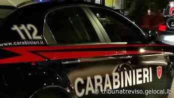 Calci e pugni alla moglie, arrestato 25enne a Spresiano - La Tribuna di Treviso