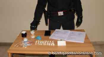 Casamassima, spaccio di droga in casa: arrestato 28enne - Il Quotidiano Italiano - Bari