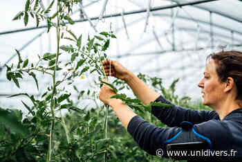 La cueillette de fraises à Fresnes-les-Montauban La Cueillette de l'Enclos samedi 19 juin 2021 - Unidivers