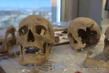 ¿Nació Cristobal Colón en Génova? Un estudio lo confirmará 515 años después de su muerte - Diario16