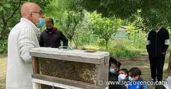 La Ciotat - Ceyreste : des abeilles pour découvrir l'écologie - La Provence