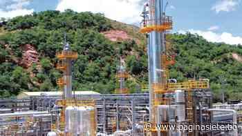 Fallo agroambiental afecta a las petroleras que explotan el campo San Alberto - Diario Pagina Siete