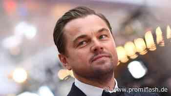 Leonardo DiCaprio investiert diese Megasumme in Umweltschutz - Promiflash.de