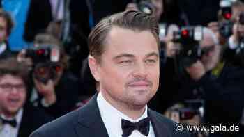 Leonardo DiCaprio: So viel gibt er für den Umweltschutz aus - Gala.de