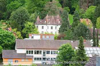 Wie soll sich Heimbach künftig entwickeln? - Teningen - Badische Zeitung